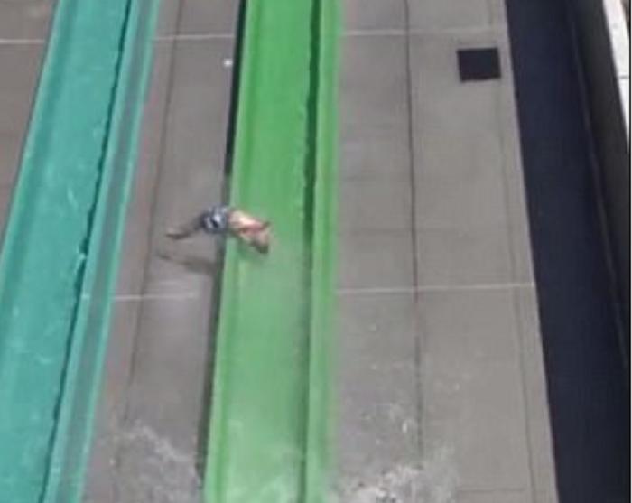 Ребенок слетел сгорки ваквапарке Калифорнии