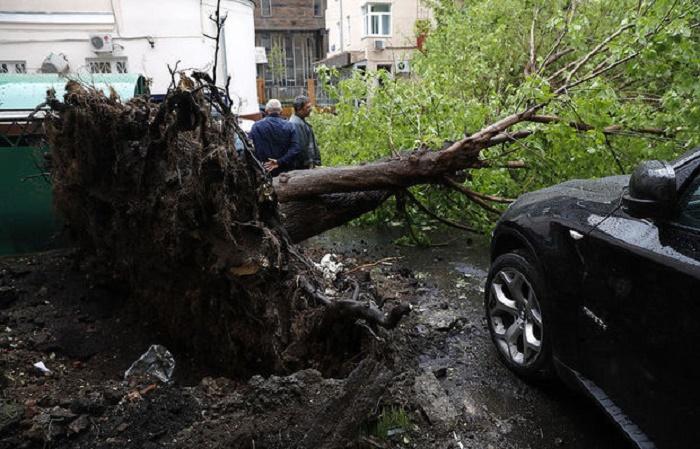 Неменее 50 человек пострадали и11 погибли— шторм в российской столице