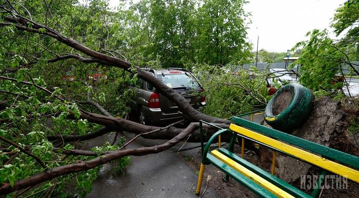 Собянин: беспрецедентный шторм забрал жизни 11 человек